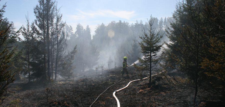 Waldbrand in Enikelberg